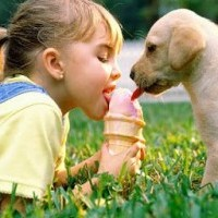 Vivre, c'est aimer. Aimer, c'est comprendre. Comprendre, c'est partager. Partager, c'est donner. Donner, c'est aimer. Aimer, c'est vivre ...