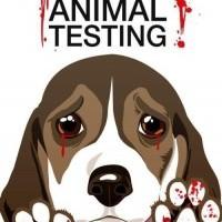 Peu m'importe que la vivisection ait ou non permis d'obtenir des résultats utiles pour l' homme . La souffrance qu'elle inflige à des animaux non consentants est le fondement même et la justification pour moi suffisante de mon aversion, un point c'est tout.