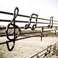 L' amour  est la meilleure musique sur la partition de la vie. Sans lui, on n'est qu'un éternel désaccord dans l'immense choeur de l'humanité.
