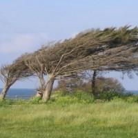 Une relation qui n'est pas fondée sur des bases solides est à la merci du moindre coup de vent.
