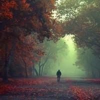 La vie est un roman écrit par le destin et interprèté par nous-mêmes.