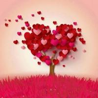 L'amour envahit le coeur et prend possession des lieux.